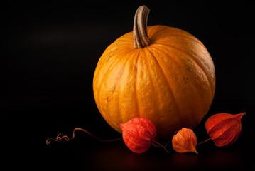 halloween pumpkin vegetable on black