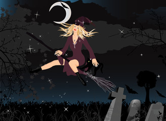 Beautiful Witch on Broom with Moon, Black Cat and Stars