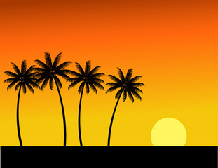 Tree silhouette and sunset in tropical island