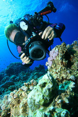 Underwater Photographer and Scorpionfish