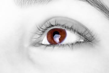 Great big  brown eye