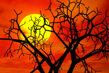 red sunset in haloween day
