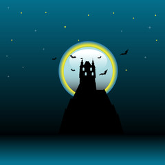Castle in the light of the moon