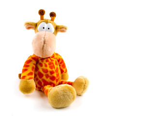 Stuffed giraffe isolated on white with funny, puzzled look