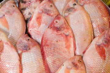 Fish stock.