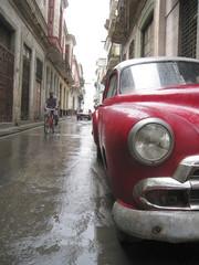 Garden Poster Cars from Cuba Rainy Cuban Street