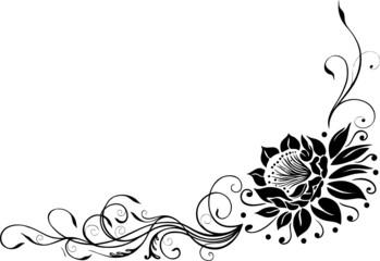 Große Blüte, Blume, Seerose, Rose, Lotusblüte, Lotus