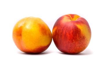Two juicy nectarines