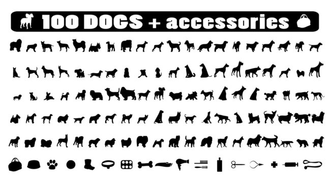 100 dogs icons and Dog accessories,vector pet emblem, dogs staff