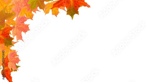 autumn leaves corner borders stock photo and royalty free images on