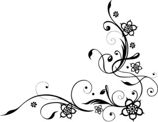 Blume, Blüte, Ranke, filigran, floral, ornamental, schwarz