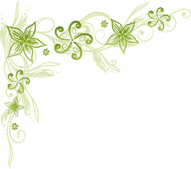 Blume, Blüte, Ranke, filigran, floral, ornamental, grün