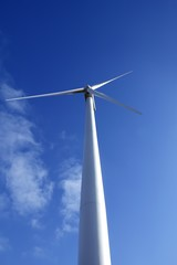 Electric wind mill viewed from the floor over blue sky
