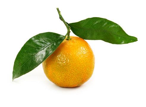 Orange clementine isolated on white background