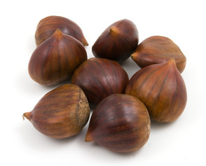 chestnuts conkers