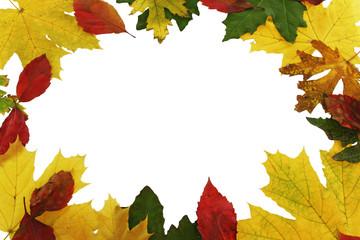 autumn  leafs as frame