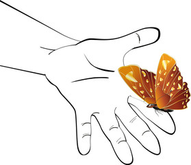 hand and the butterfly