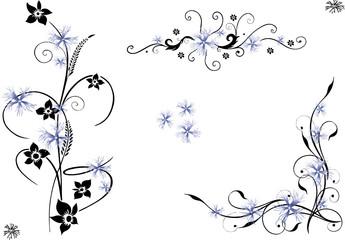 Ranke, floral, Blumen, Kornblume, Kornblumen Set