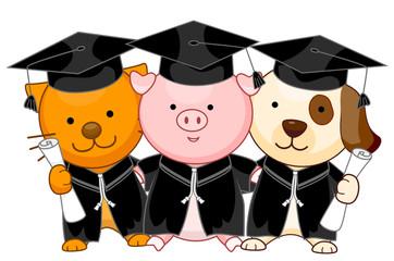 Animal Graduates