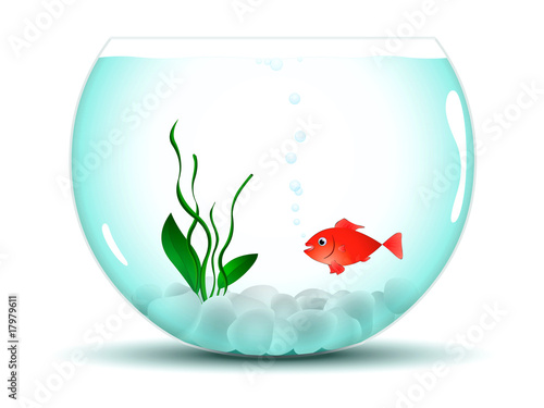 Poisson rouge dans son aquarium photo libre de droits for Bocal a poisson prix