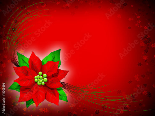 Stella Di Natale Auguri Christmas Card Fleur D Amour Noel 2 Stock