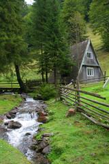 Carpathian's stream