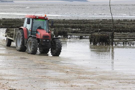 tracteur de mer