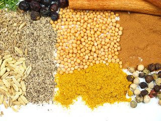 Collection of spices isolated on white