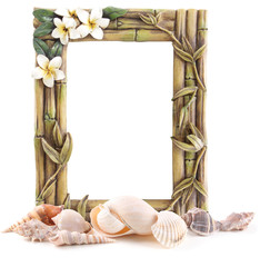 Tropical Frame and Sea shells