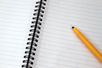 Notepad and Pen 1