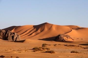 Desert scenes14