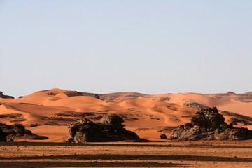 Desert scenes26