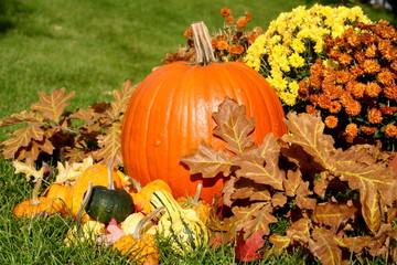 Pumpkin Fall display