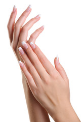 Aluminium Prints Manicure Beauty elegant female hands with french manicure