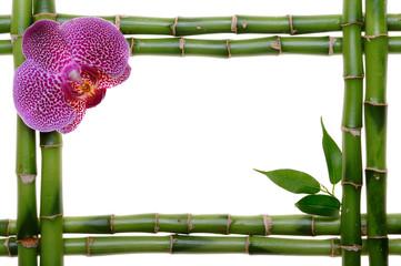 Wall Mural - Bamboo frame