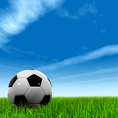 High resolution 3d leather black and white soccer ball on grass