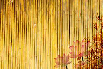 Wall Mural - lotus and bamboo background