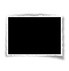 marco foto horizontal