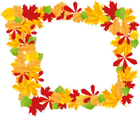 Frame with different autumn leaves