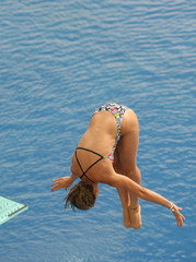 Competicion de saltos