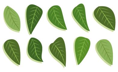 leafs set