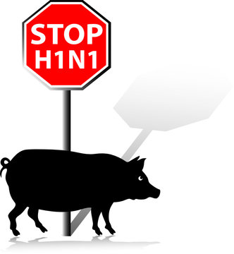 stop swine flu illustration