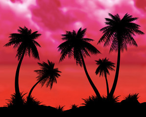 Silhouettes of palms on a night sea background.