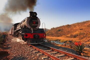 Steam Locomotive - Creighton Aloe Festival South Africa