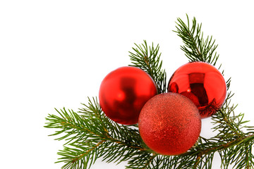 christmas fir-tree with red bolls