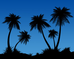 Silhouettes of palms on a dark blue background.