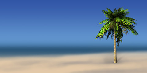 Palms on a sea background and place for sample text.