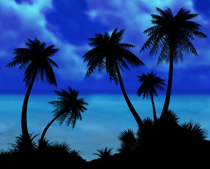 Silhouettes of palms on a sea background.