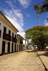 Calle y palmera en Paraty