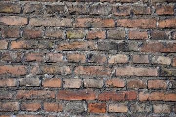 ściana, mur z cegły